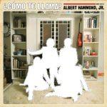 Albert Hammond jr. / Como Te Llama