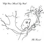 Clap Your Hands Say Yeah / The Tourist