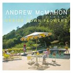 Andrew McMahon in the Wilderness / Upside Down Flowers