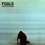 Foals / What Went Down