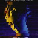 the pains of being pure at heart / the echo of pleasure