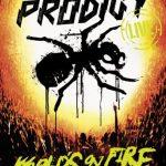 Prodigyのライブ映像