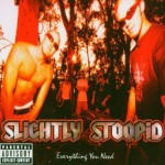 Slightly Stoopid – Everything You Need